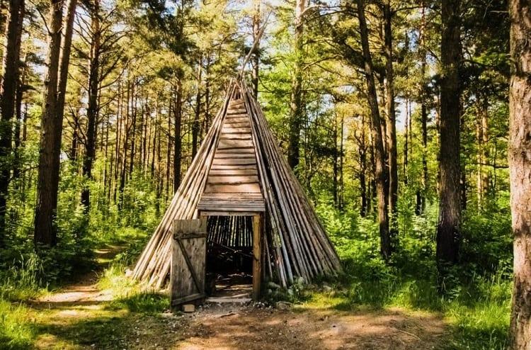 Surival Shelter