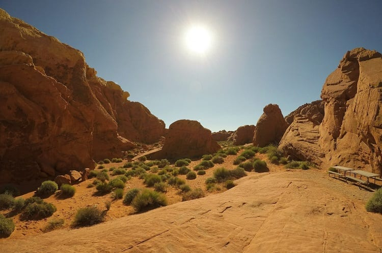 Nevada Sun