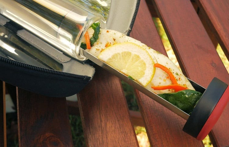 salmon from solar oven