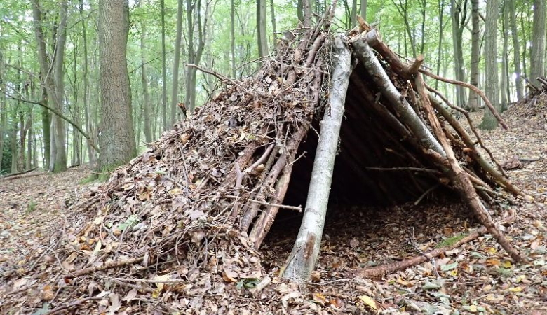 A Line Shelter