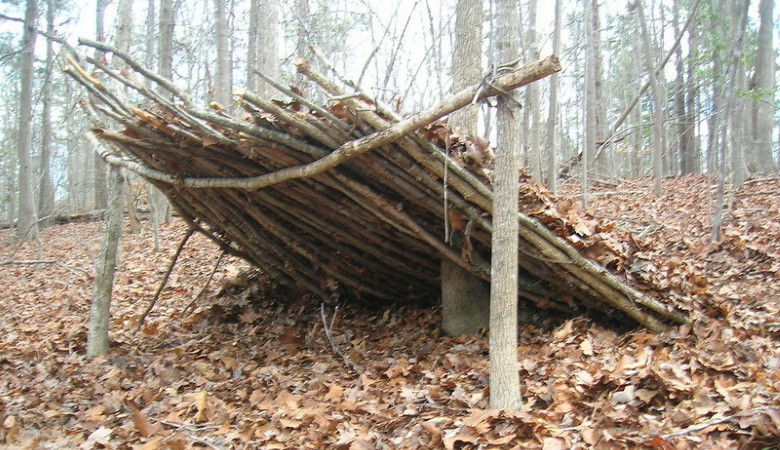 Lean to Shelter